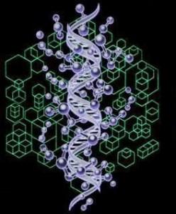 DNAglia