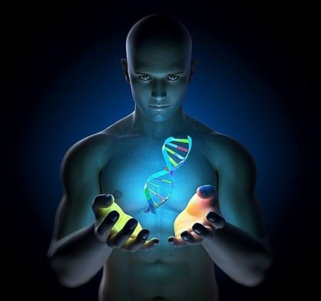 A Ascensão é a Reabilitação Genética do ADN Humano Original
