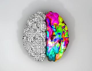 pensamento holístico versus compartimentalizado