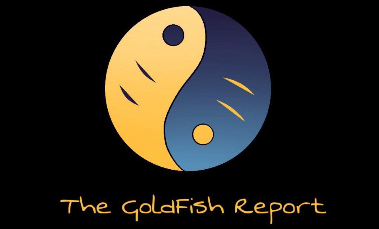 relatório goldfish com cobra ascensão